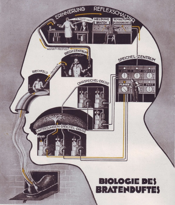 Fritz Kahn: The connection between the sense of smell and the salivary reflex as an industrial process (1927)